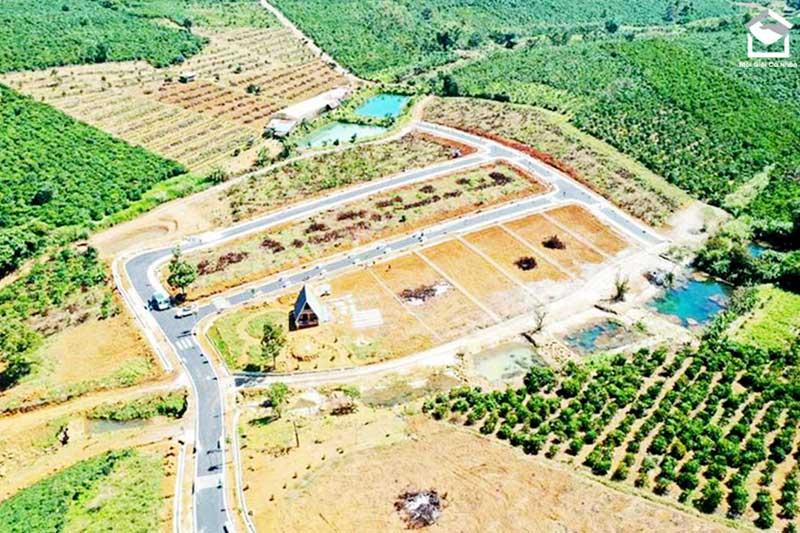 Diện tích tách thửa đất trồng cây lâu năm phải đáp ứng được diện tích tối thiểu được tách thửa