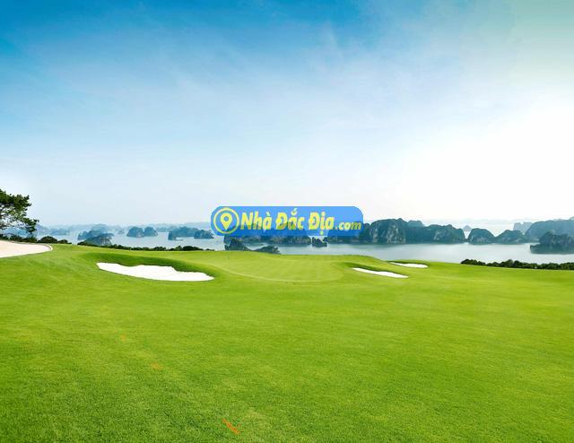 Hệ tiện ích đắt giá của biệt thự đồi hướng vịnh FLC Grand Villa Halong - Ảnh 1.